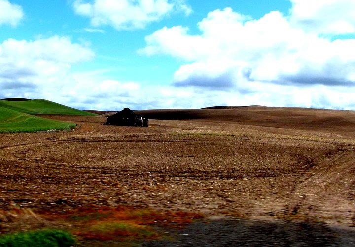 No-spend fun on the Palouse