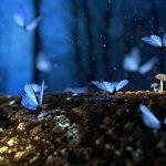Angelina Ballerina Butterflies