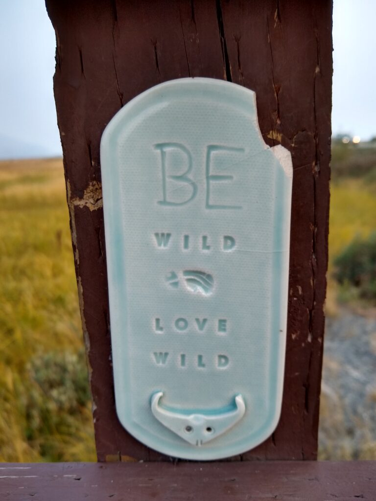 Sign post that says Be Wild Love WIld